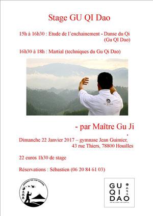Stage de Gu Qi Dao avec Maître GU Ji - Aramis - Houilles - Tai chi chuan - Tai-chi-chuan - Tai-chi-chuan Santé - Style Chen - Style Yang - Qi Gong - Martial - Tai-chi-chuan Martial - Tuishou - Sanda - Sanda Sanshou - Boxe Chinoise - Gu Qi Dao - Épée du style Yang