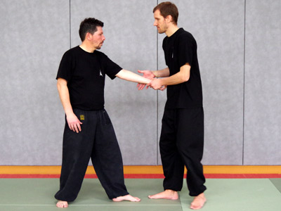 Jouer du Pipa (Style Yang) - Tai chi chuan - Tai-chi-chuan - Martial - Tai-chi-chuan Martial - Tai-chi-chuan Santé - Qi Gong - Sanda - Gu Qi Dao - Aramis - Houilles